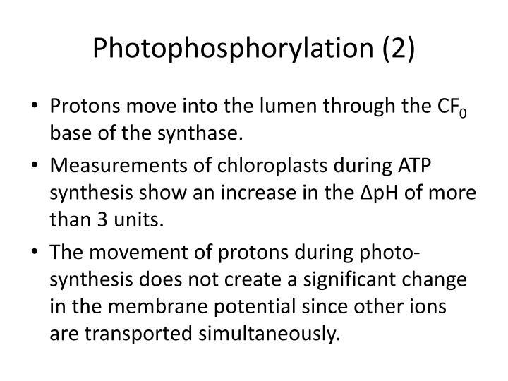 Photophosphorylation (2)