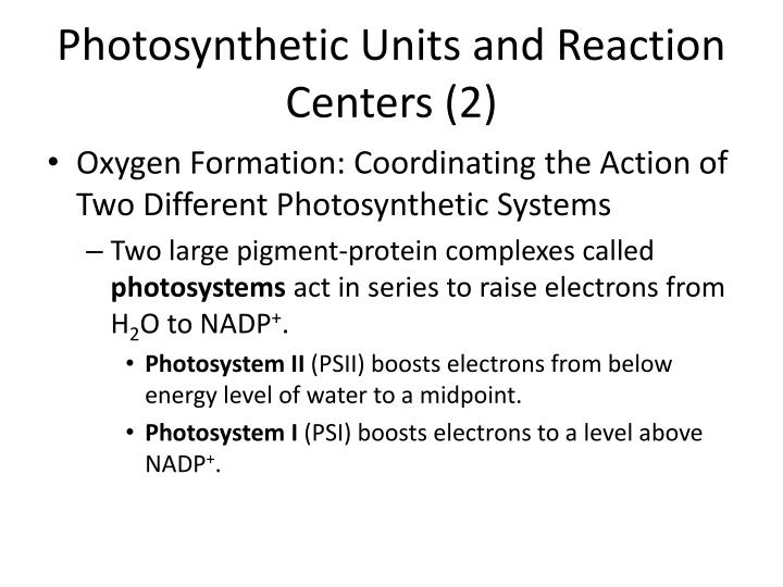 Photosynthetic Units and Reaction Centers (2)