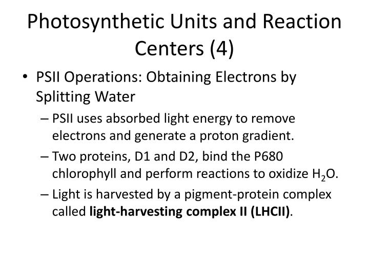 Photosynthetic Units and Reaction Centers (4)