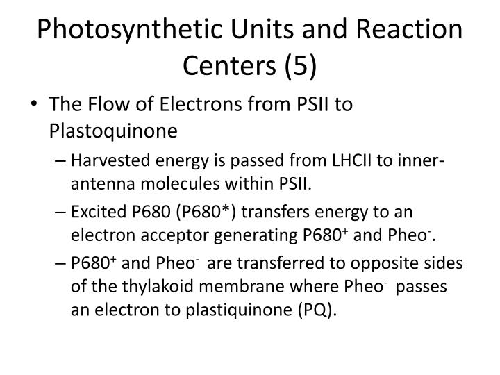 Photosynthetic Units and Reaction Centers (5)