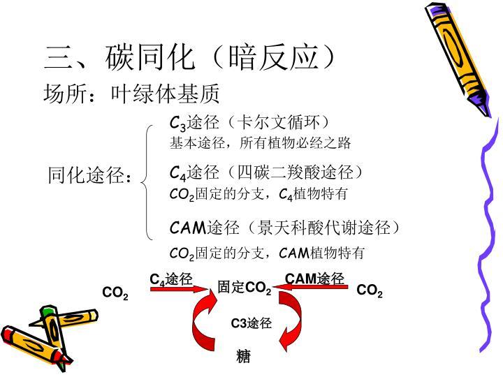三、碳同化(暗反应)