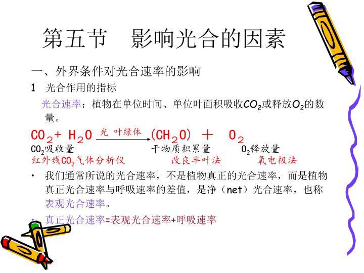 第五节 影响光合的因素