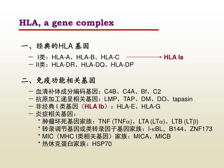 HLA, a gene complex