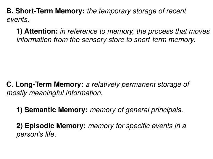 B. Short-Term Memory: