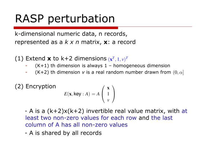 RASP perturbation