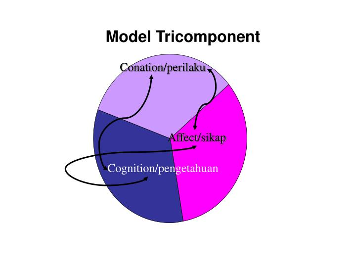 Model Tricomponent