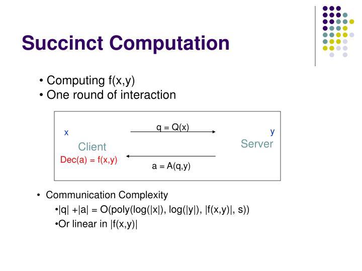 Succinct computation