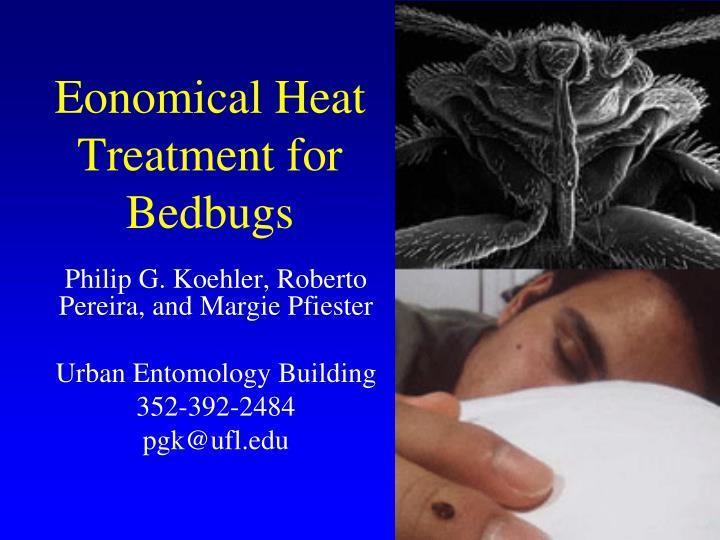 Eonomical heat treatment for bedbugs