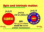 spin and intrinsic motion