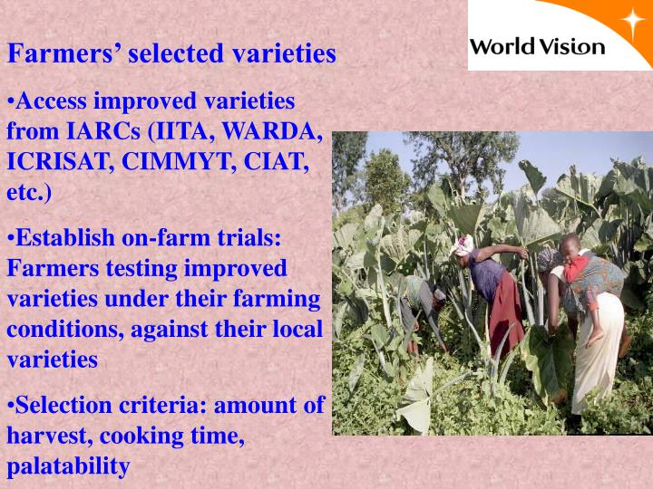 Farmers' selected varieties