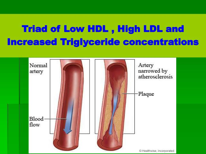Triad of Low HDL , High LDL and Increased Triglyceride concentrations
