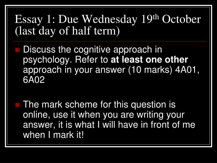 Essay 1: Due Wednesday 19
