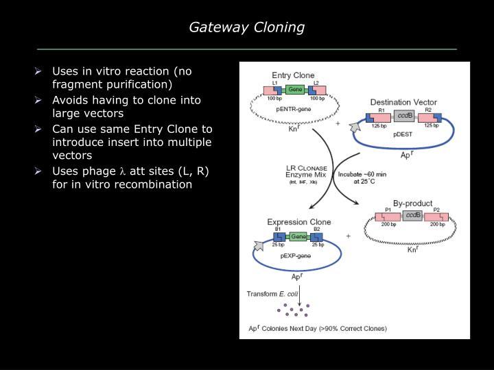 Gateway Cloning