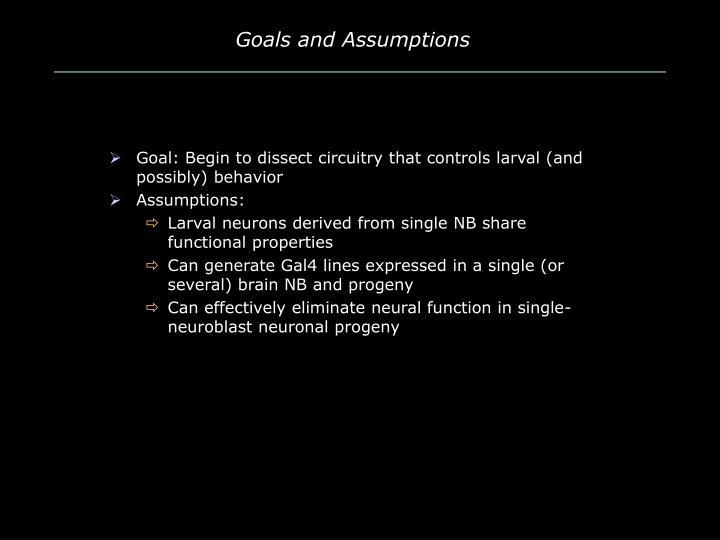 Goals and assumptions