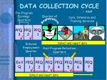 data collection cycle adult