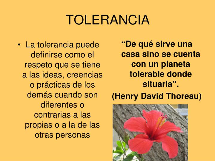 La tolerancia puede definirse como el respeto que se tiene a las ideas, creencias o prácticas de los demás cuando son diferentes o contrarias a las propias o a la de las otras personas