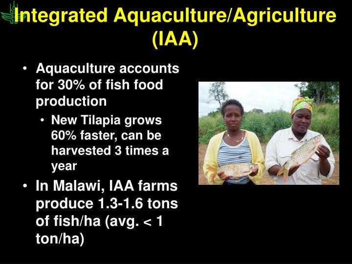 Integrated Aquaculture/Agriculture (IAA)