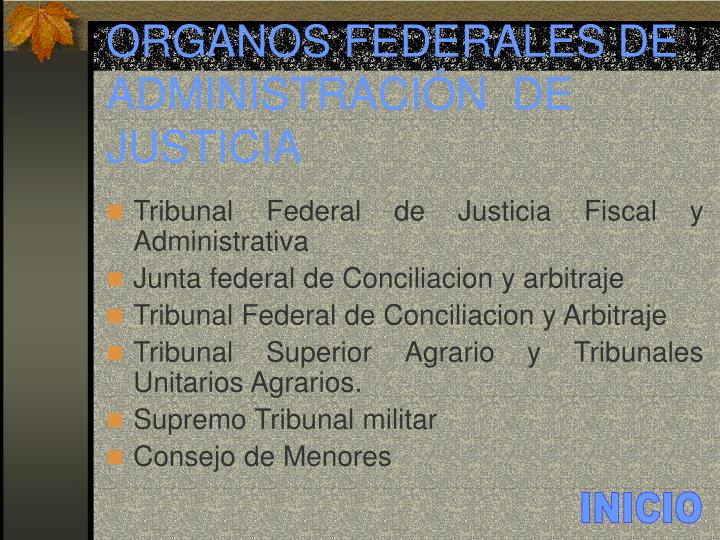 ORGANOS FEDERALES DE ADMINISTRACIÓN  DE JUSTICIA
