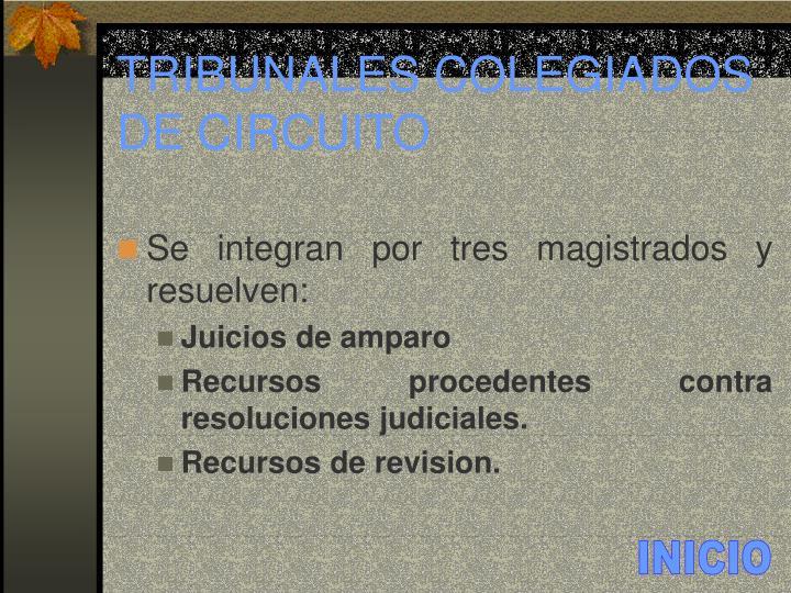 TRIBUNALES COLEGIADOS DE CIRCUITO