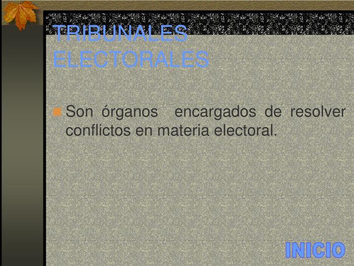 TRIBUNALES ELECTORALES
