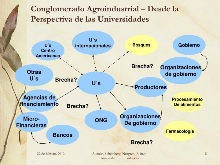 Conglomerado Agroindustrial – Desde la Perspectiva de las Universidades