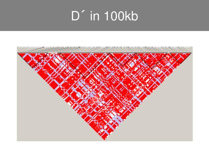 D´ in 100kb