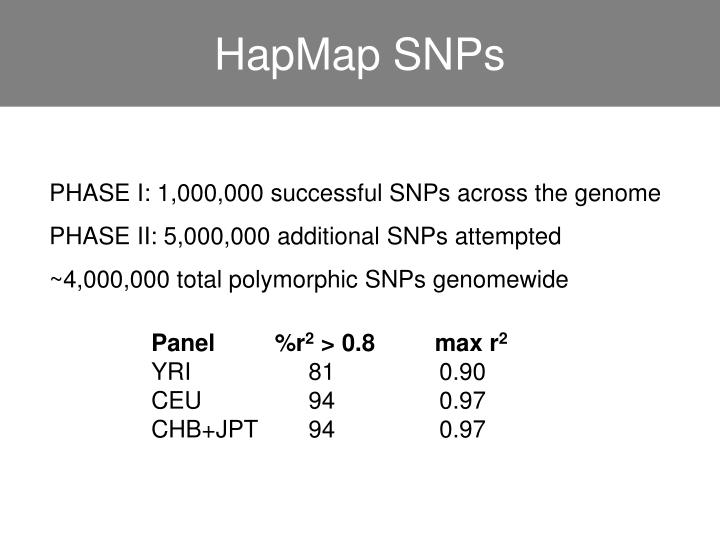 HapMap SNPs