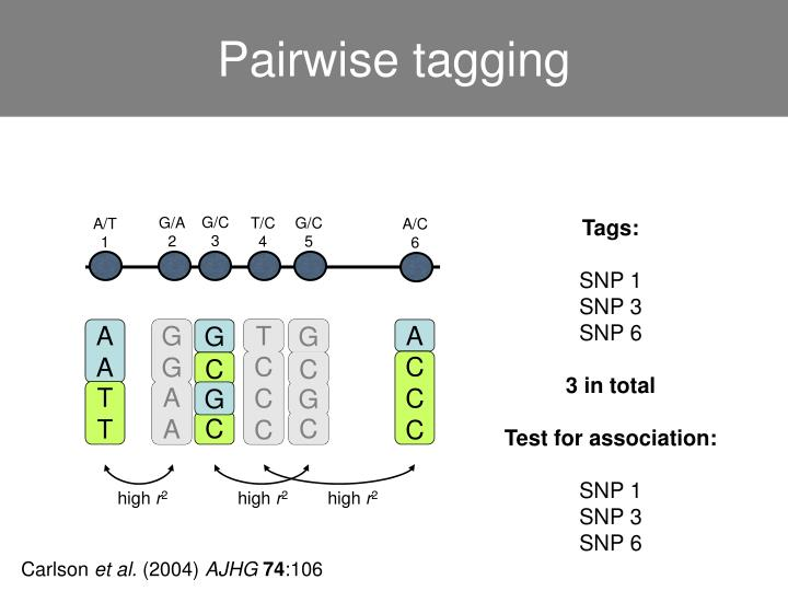 Pairwise tagging