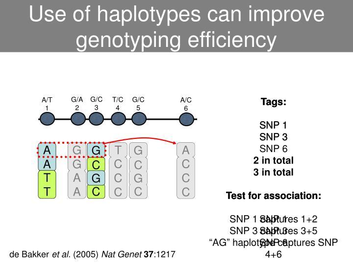 Use of haplotypes can improve genotyping efficiency