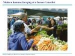 modern humans foraging at a farmer s market