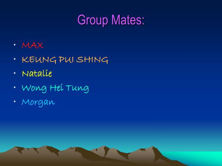 Group mates