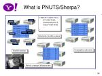 what is pnuts sherpa