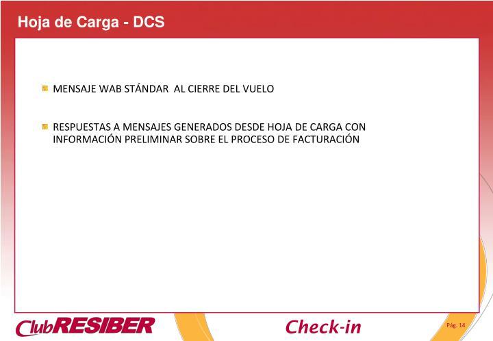 Hoja de Carga - DCS