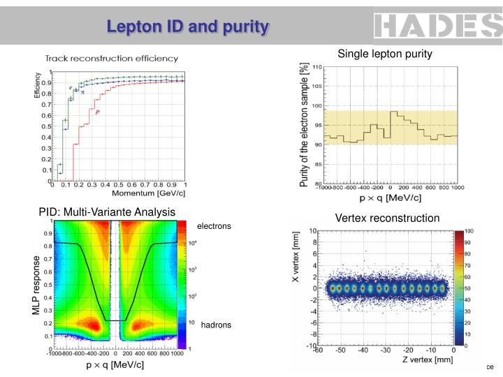 Lepton ID and