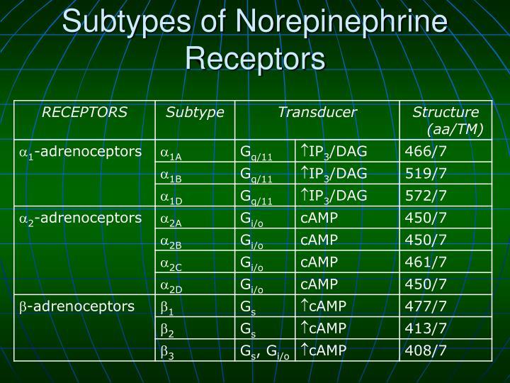 Subtypes of Norepinephrine Receptors