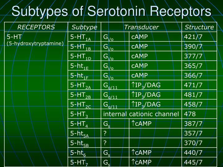 Subtypes of Serotonin Receptors