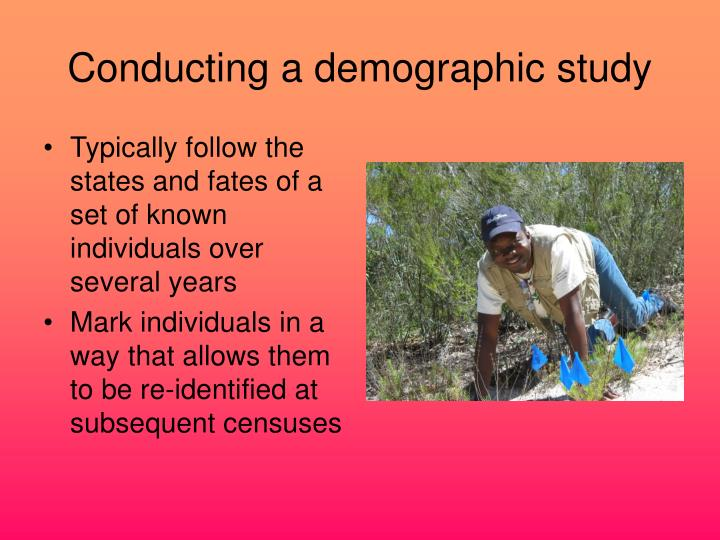 Conducting a demographic study
