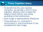 fuzzy cognition query