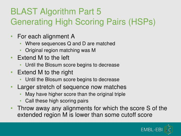 BLAST Algorithm Part 5