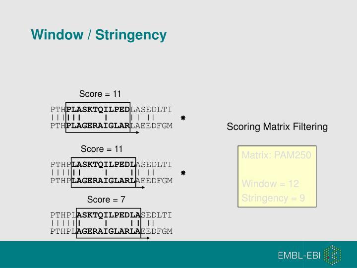 Window / Stringency