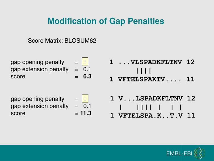 Modification of Gap Penalties