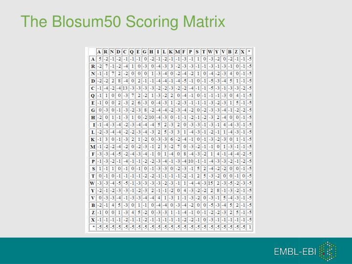 The Blosum50 Scoring Matrix