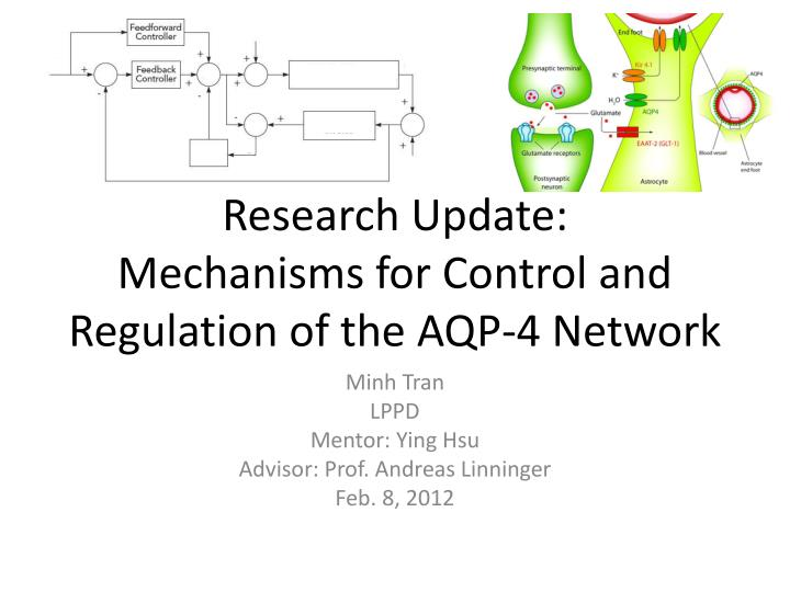 research update mechanisms for control and regulation of the aqp 4 network n.