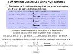 b oxydation des acides gras non satures