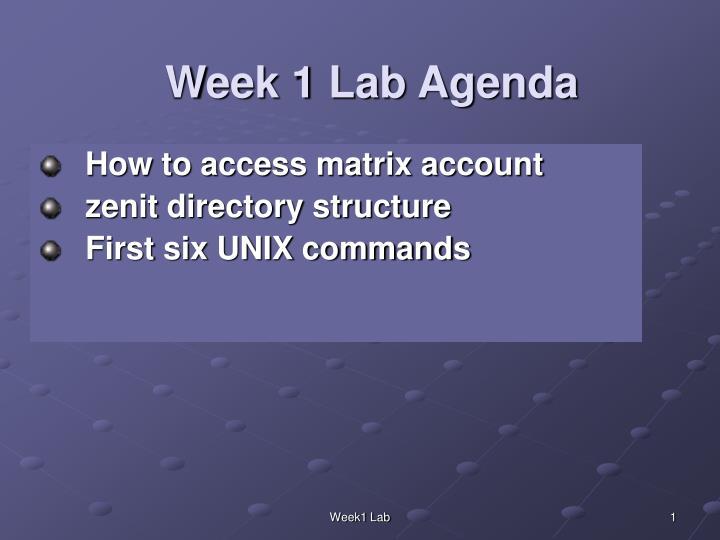 week 1 lab agenda n.