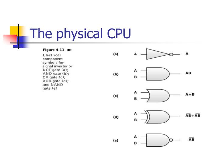 The physical CPU