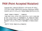 pam point accepted mutation