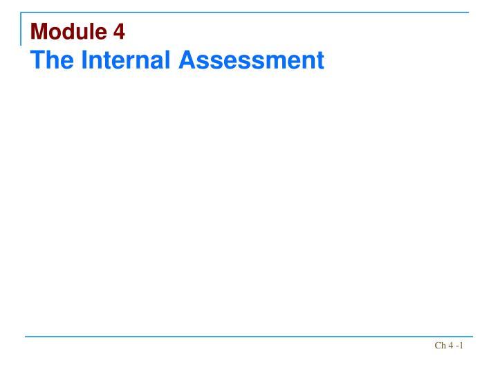 module 4 the internal assessment n.