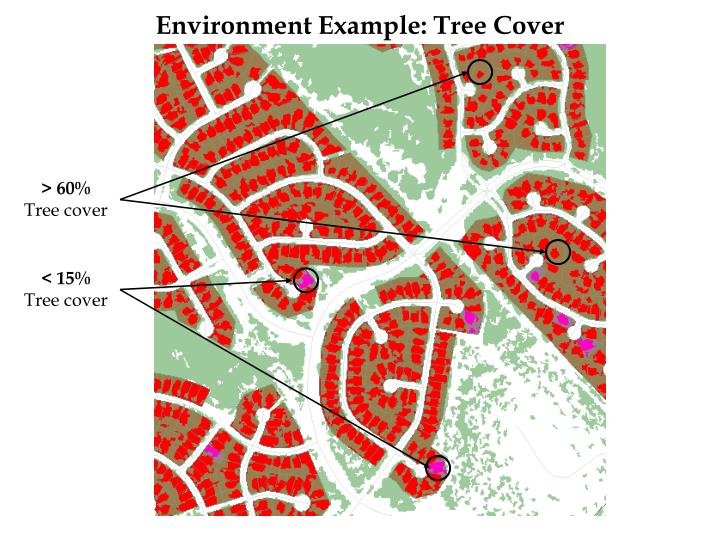 Environment Example: Tree Cover