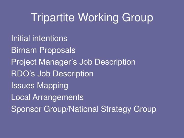 tripartite working group n.
